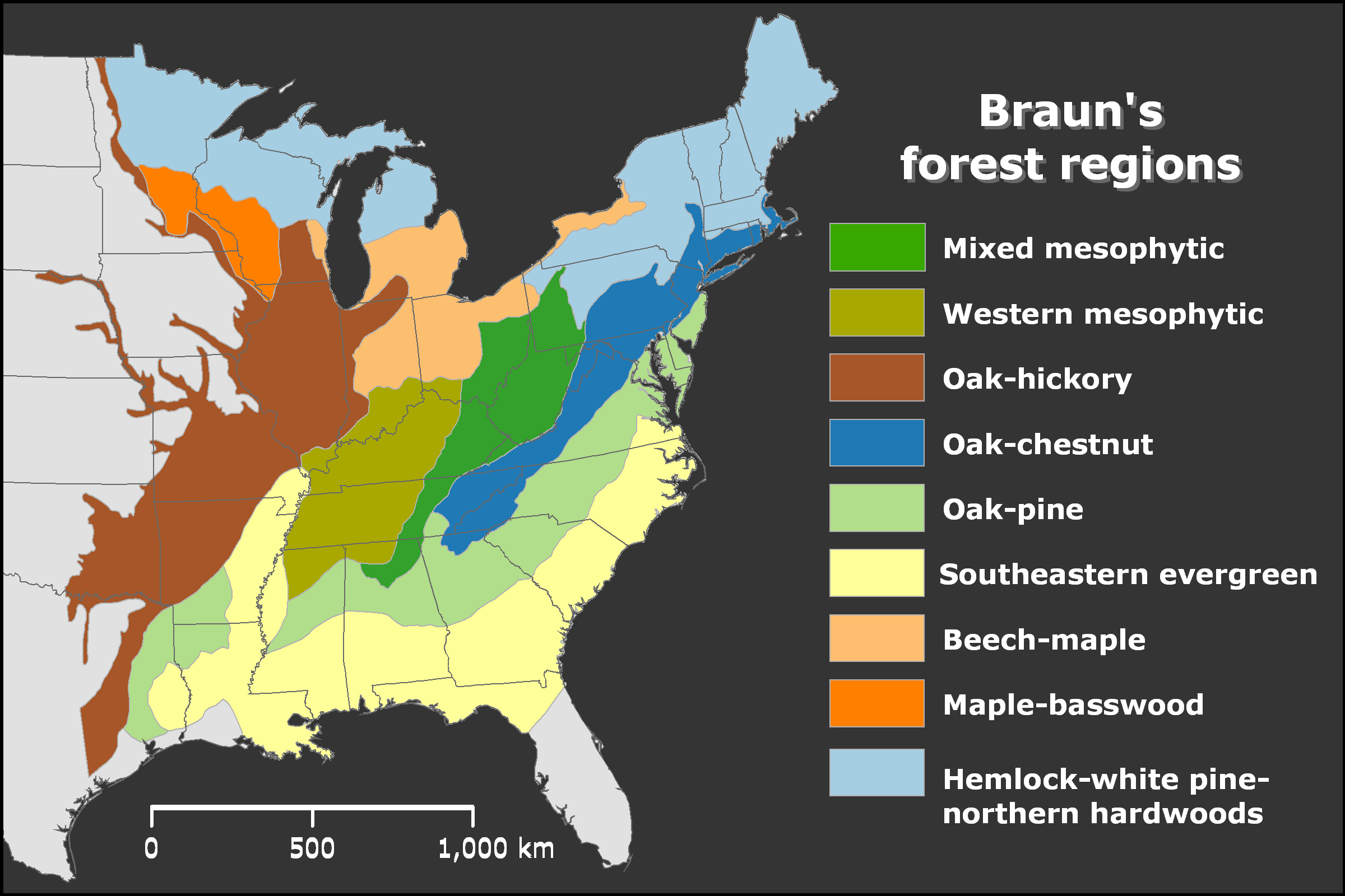Forest Atlas  Maps That Explain The Worlds Forests World Forest - Map of us forest regions
