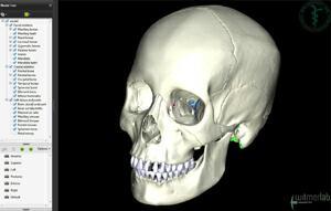 OU-HCOM 3D Interactive Human Anatomy